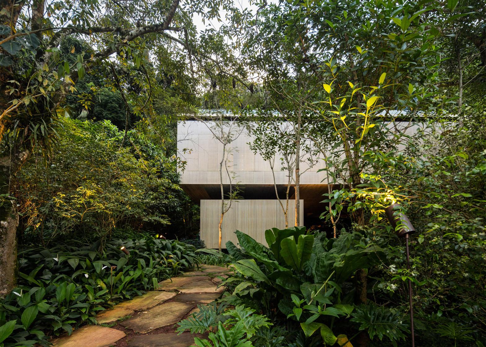 Brazilian Houses Rooftop Infinity Pool Overlooks The Brazilian Rainforest From