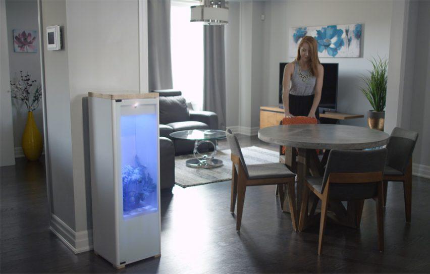 Grobo designs app-controlled indoor gardening system