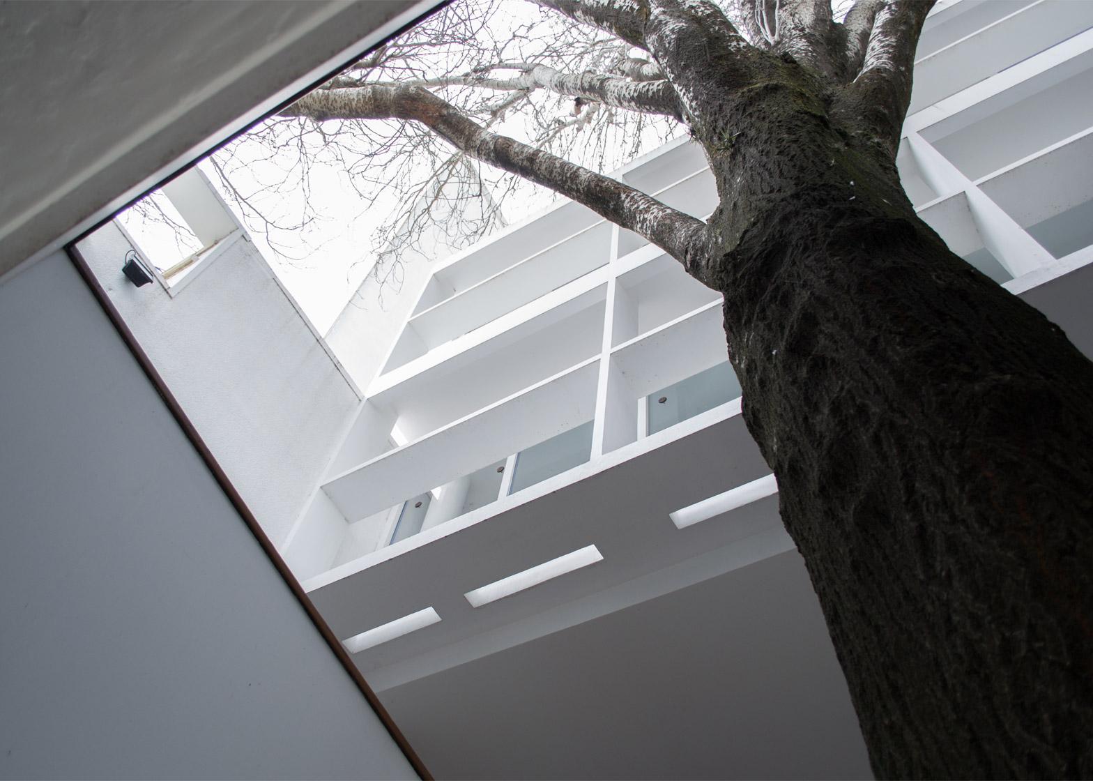 Le Corbusier designed Maison Curutchet for an Argentinian surgeon