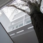 Le Corbusier's Maison Curutchet in Argentina has a tree at its centre
