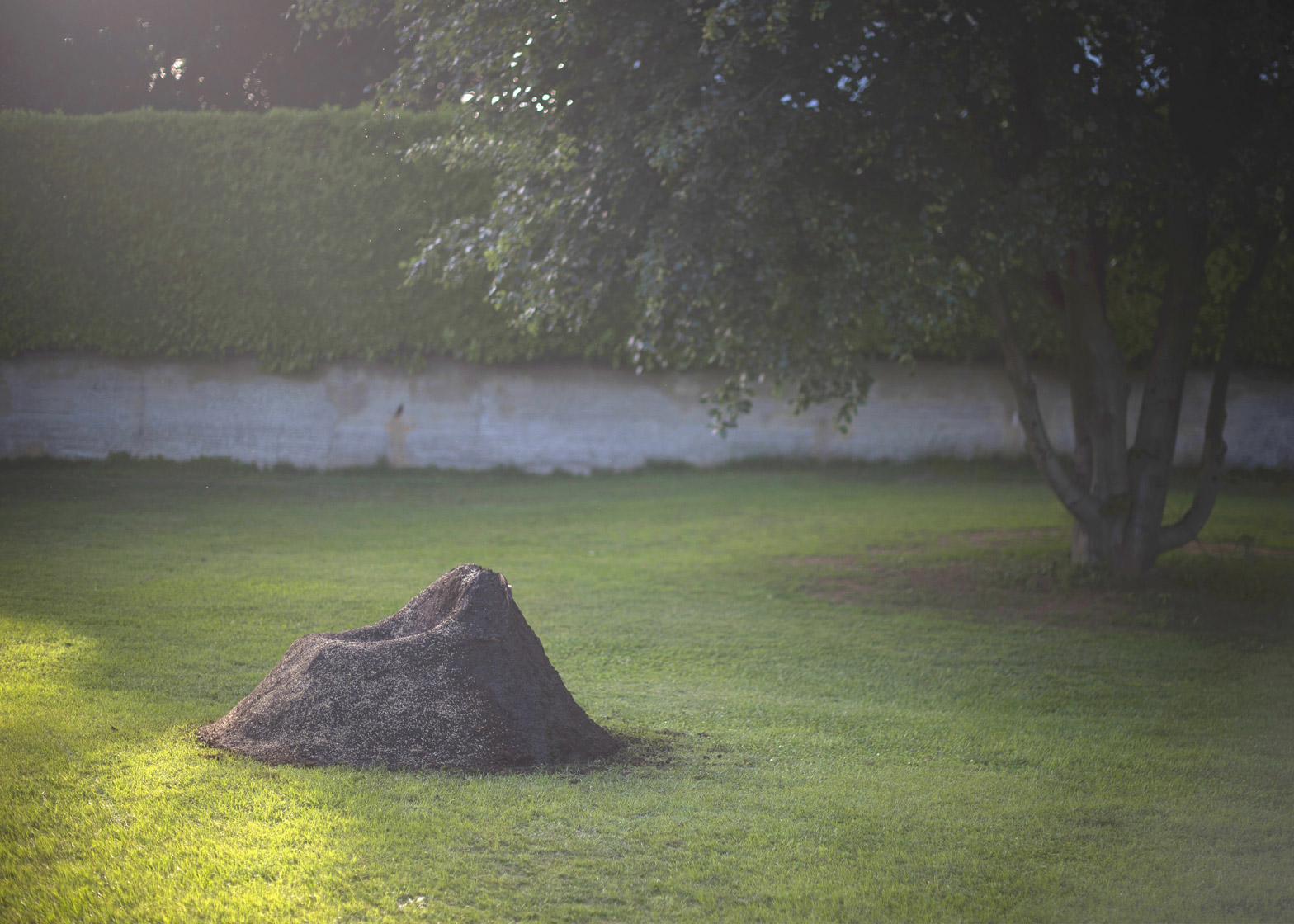Terra grass chair by Nucleo