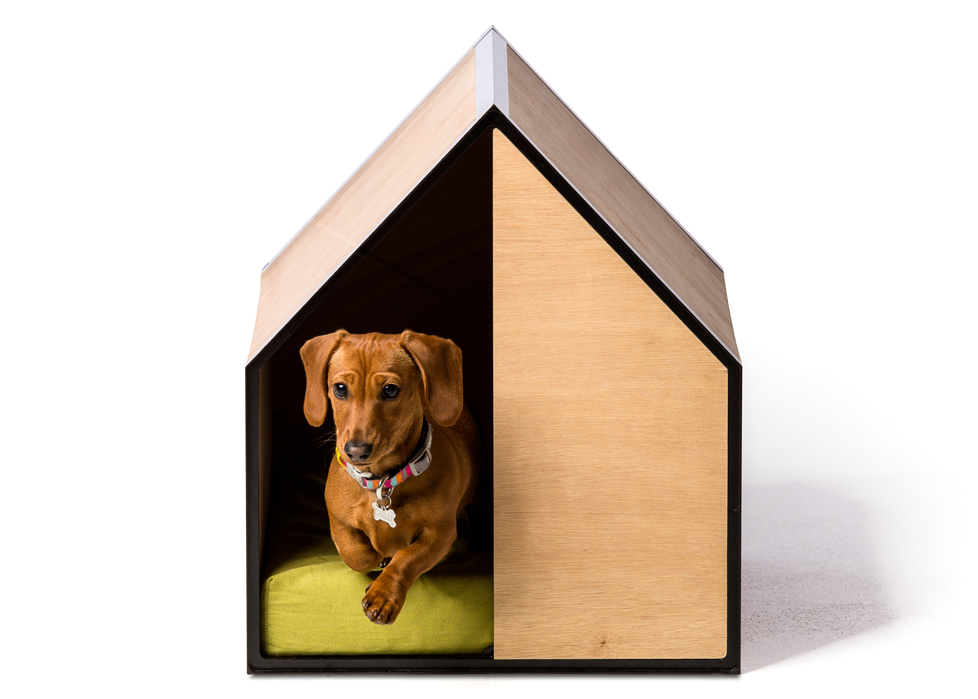 The Dog Room by Made by Pen