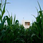 Wendell Burnette builds little house on the prairie in Wisconsin