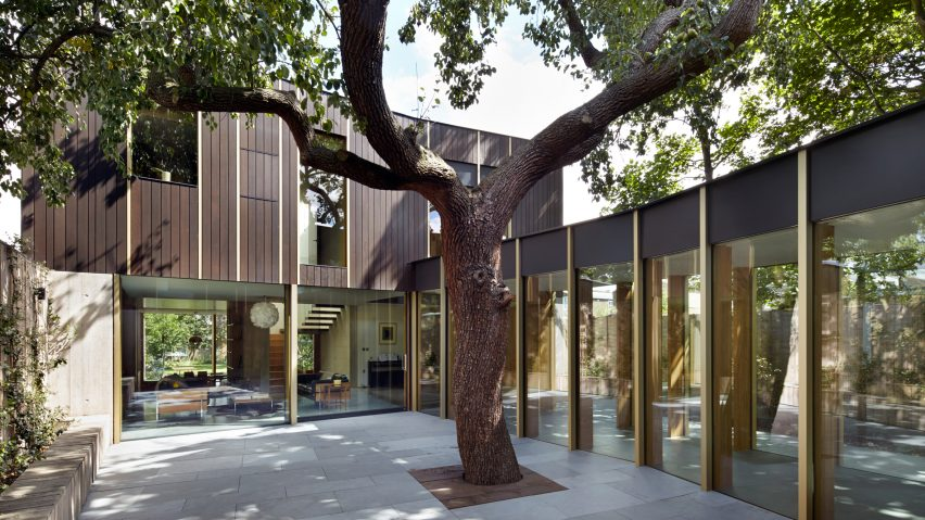 Edgley Design builds family home around 100-year-old pear tree in south London