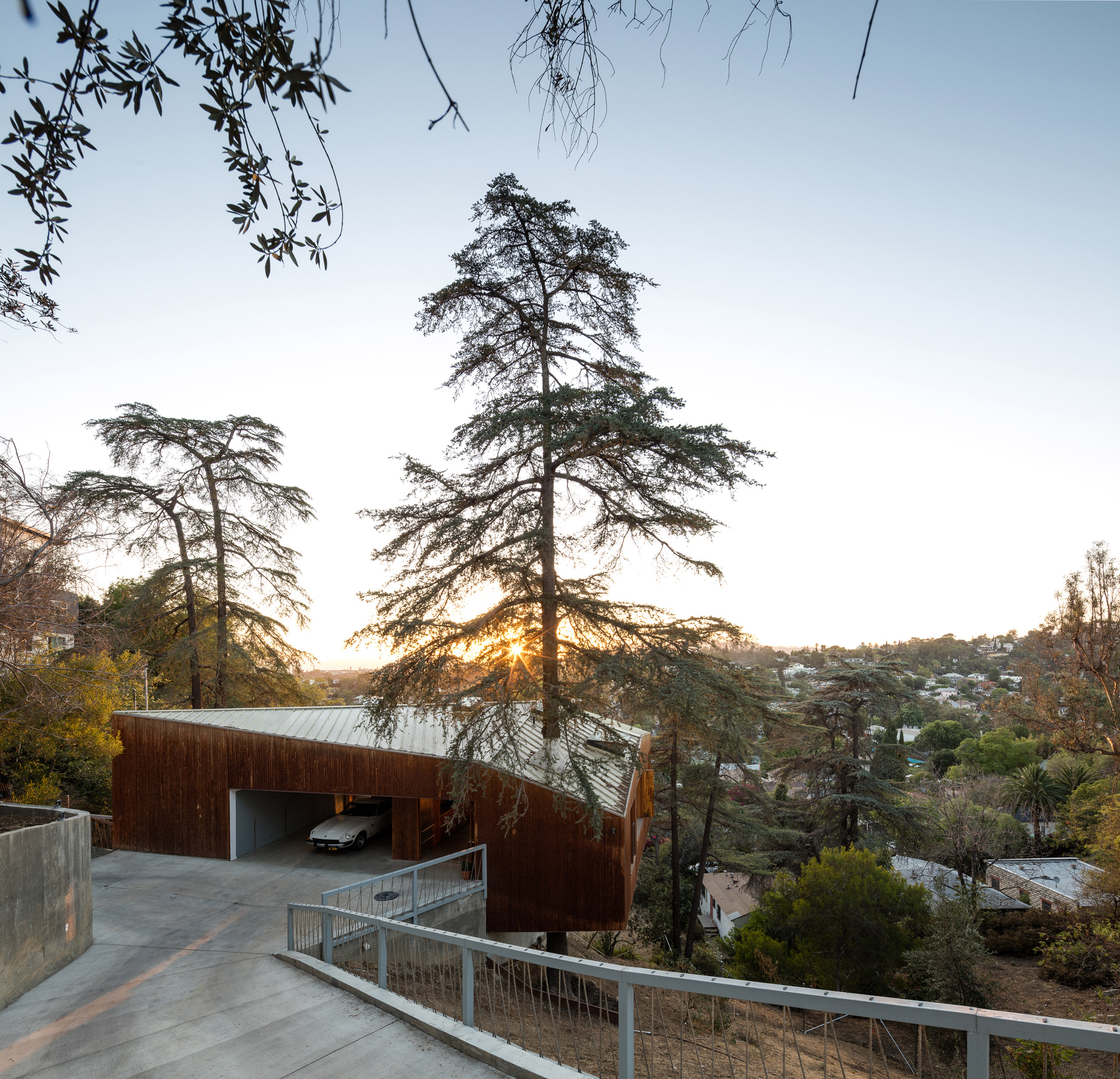 Anonymous Architects builds LA house around existing cypress tree