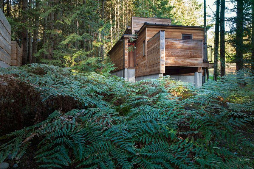Rainforest Retreat by Agathom Co.