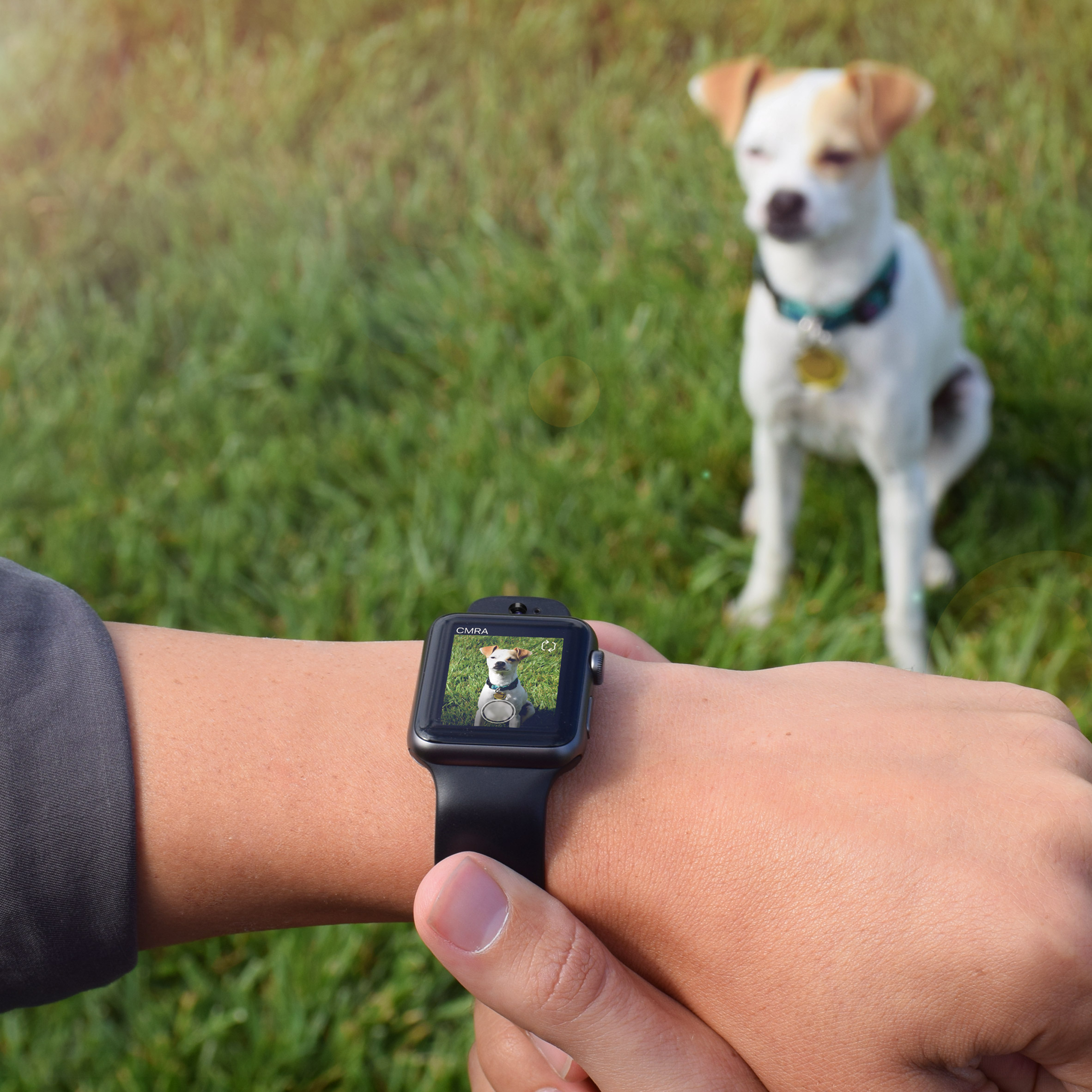Camera capability comes to Apple Watch with launch of third-party band