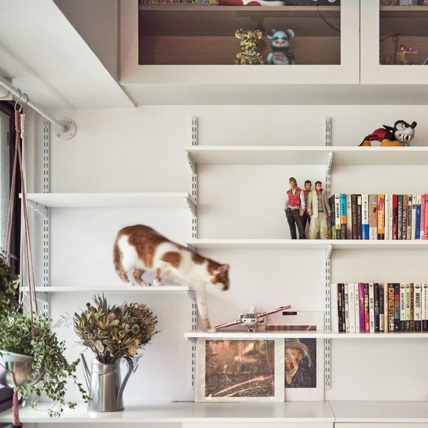 Six houses designed as playgrounds for cats