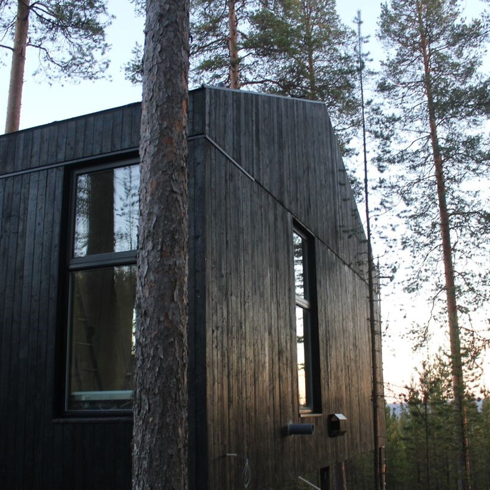 Snøhettau0027s Charred Timber Treehouse Is The Next Addition To Swedenu0027s  Treehotel
