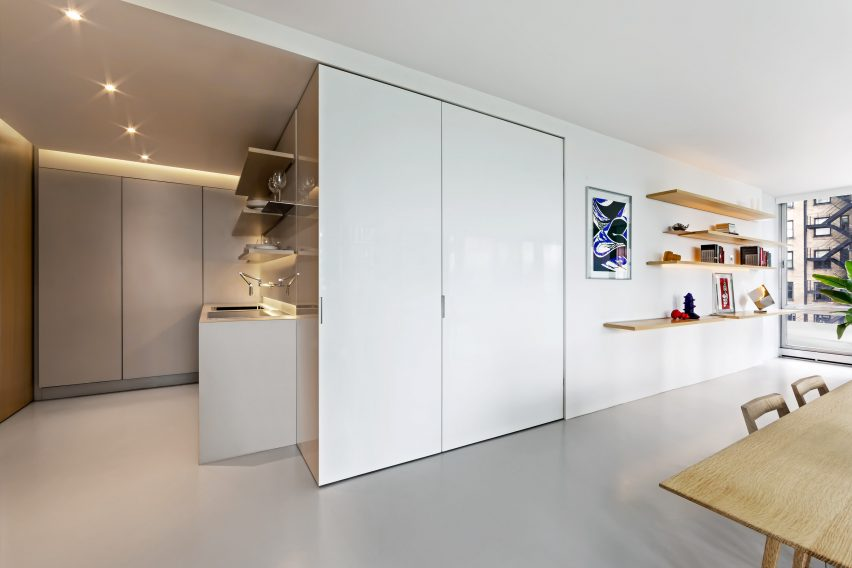 Vladimir Radutny Architects' Unit 3E apartment in Chicago