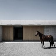 Marte.Marte Architects uses concrete and wood for Alpine veterinary practice