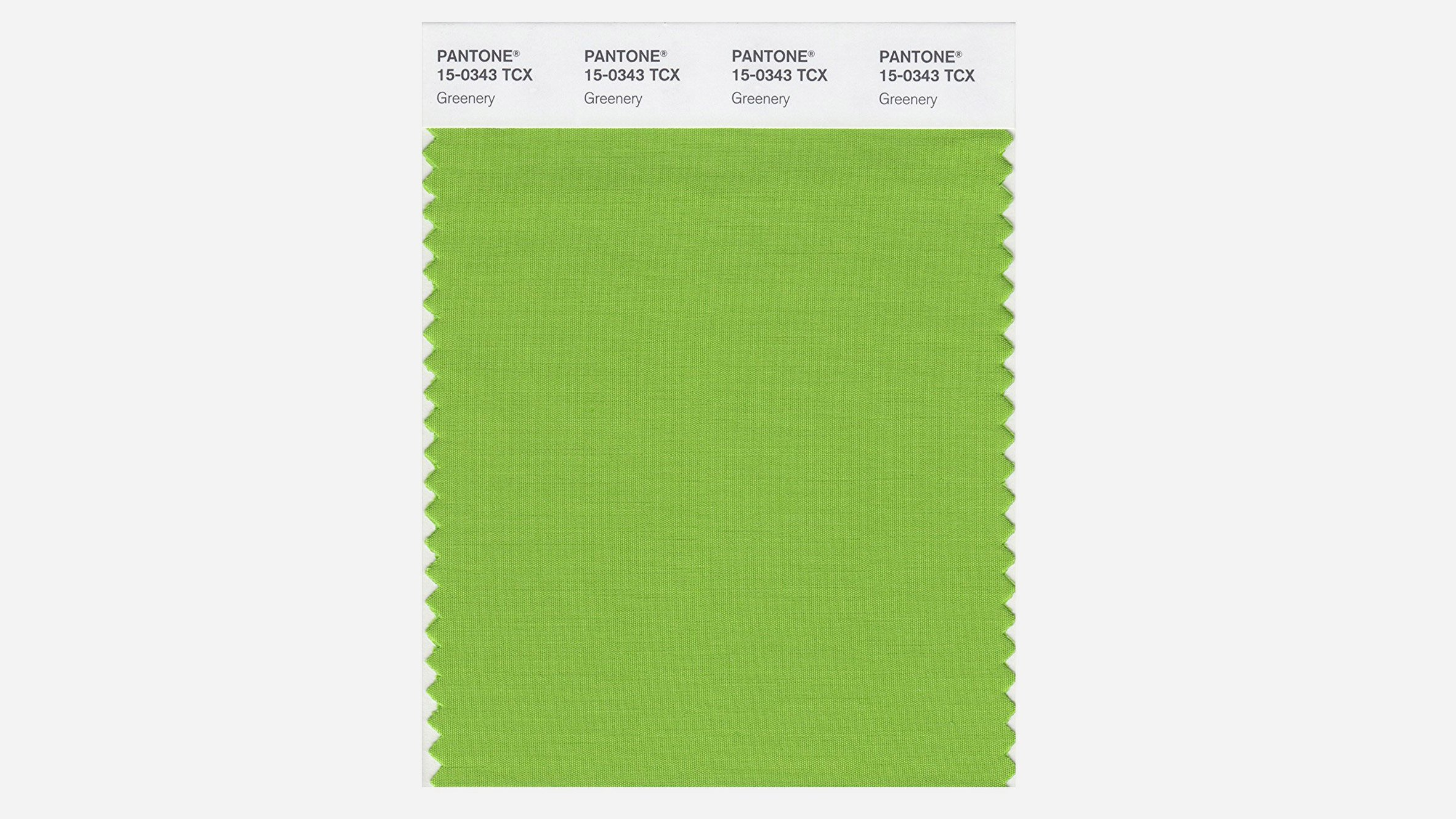 Pantone Color Institute's color of the year is 'greenery'