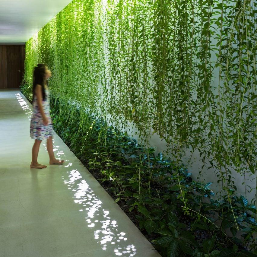 Mia Design Studio Envelopes Vietnam House In Plant Covered