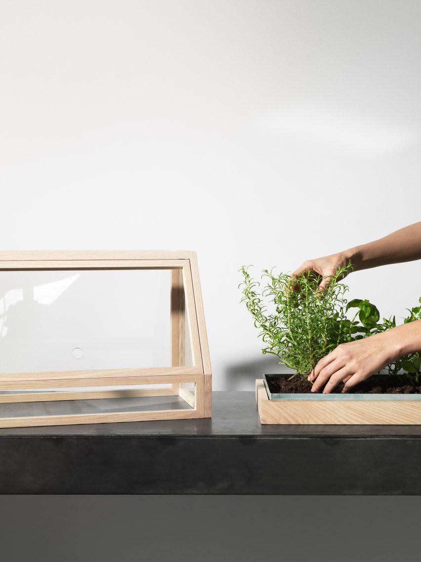 Atelier 2+ designs miniature greenhouse for indoor gardeners