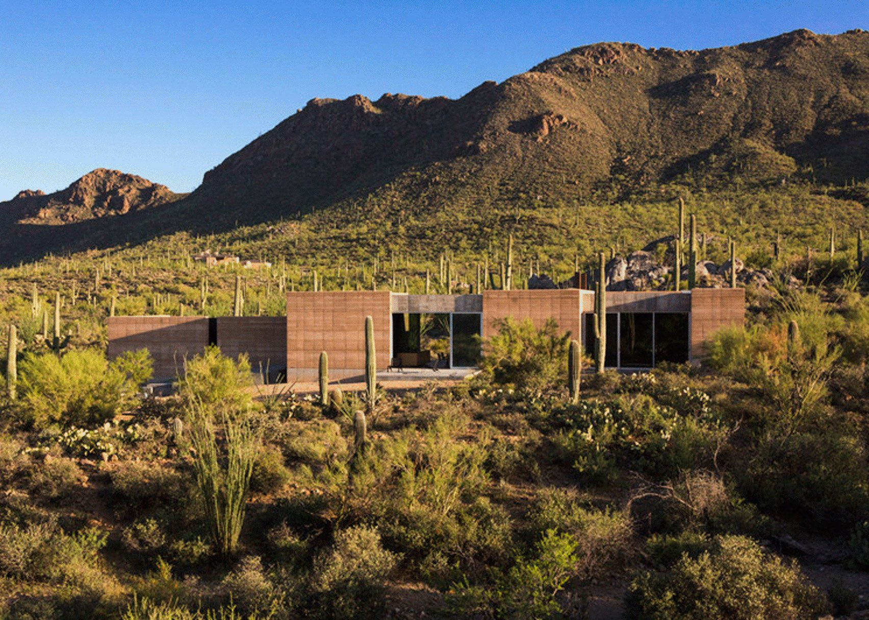 Tuscon Mountain Retreat by DUST