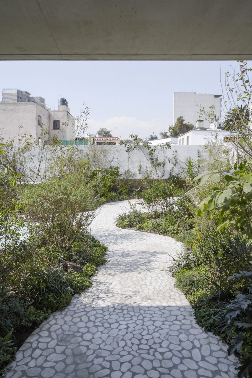 verdant garden with white marble paths tops renovated mexican home