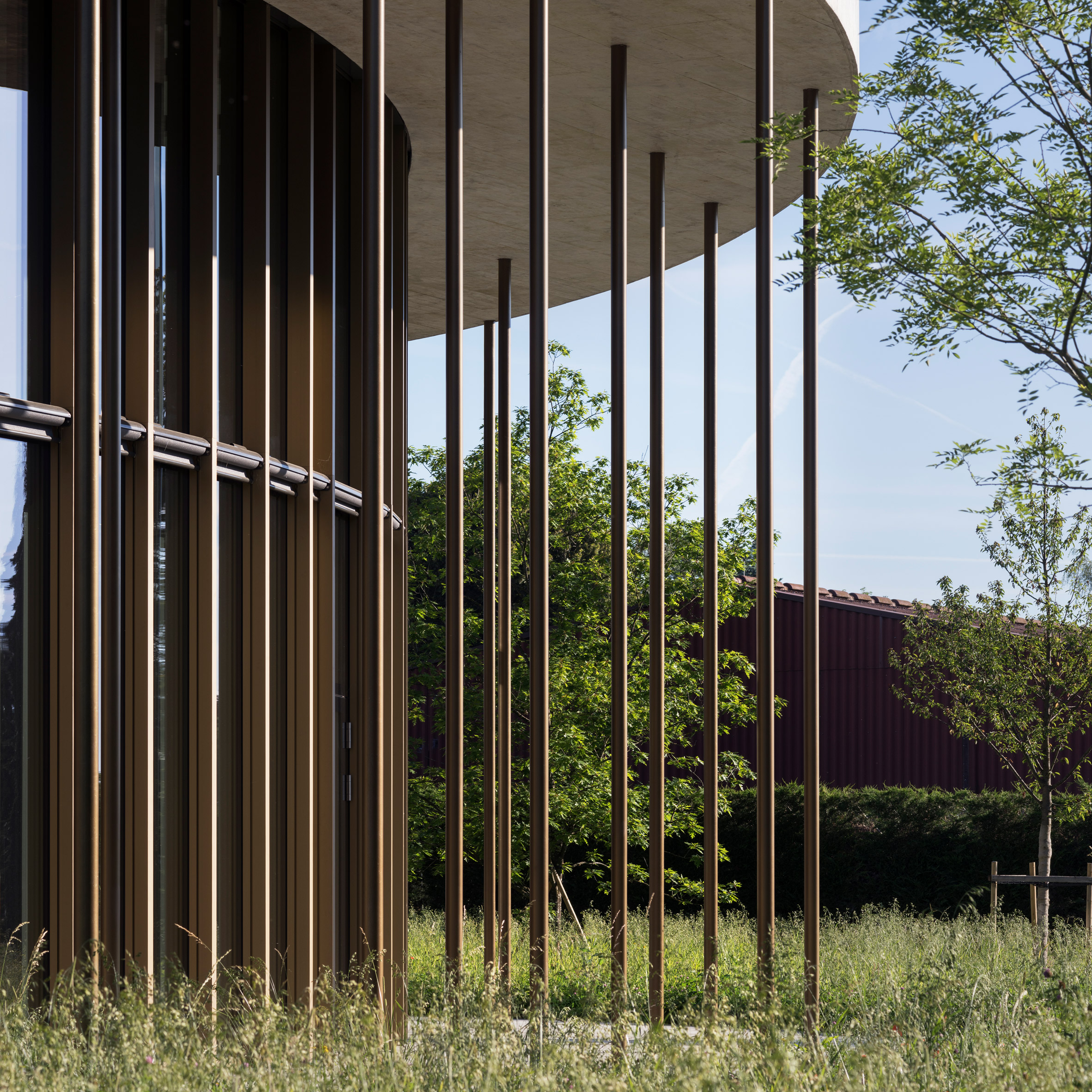 Search Office Archdaily