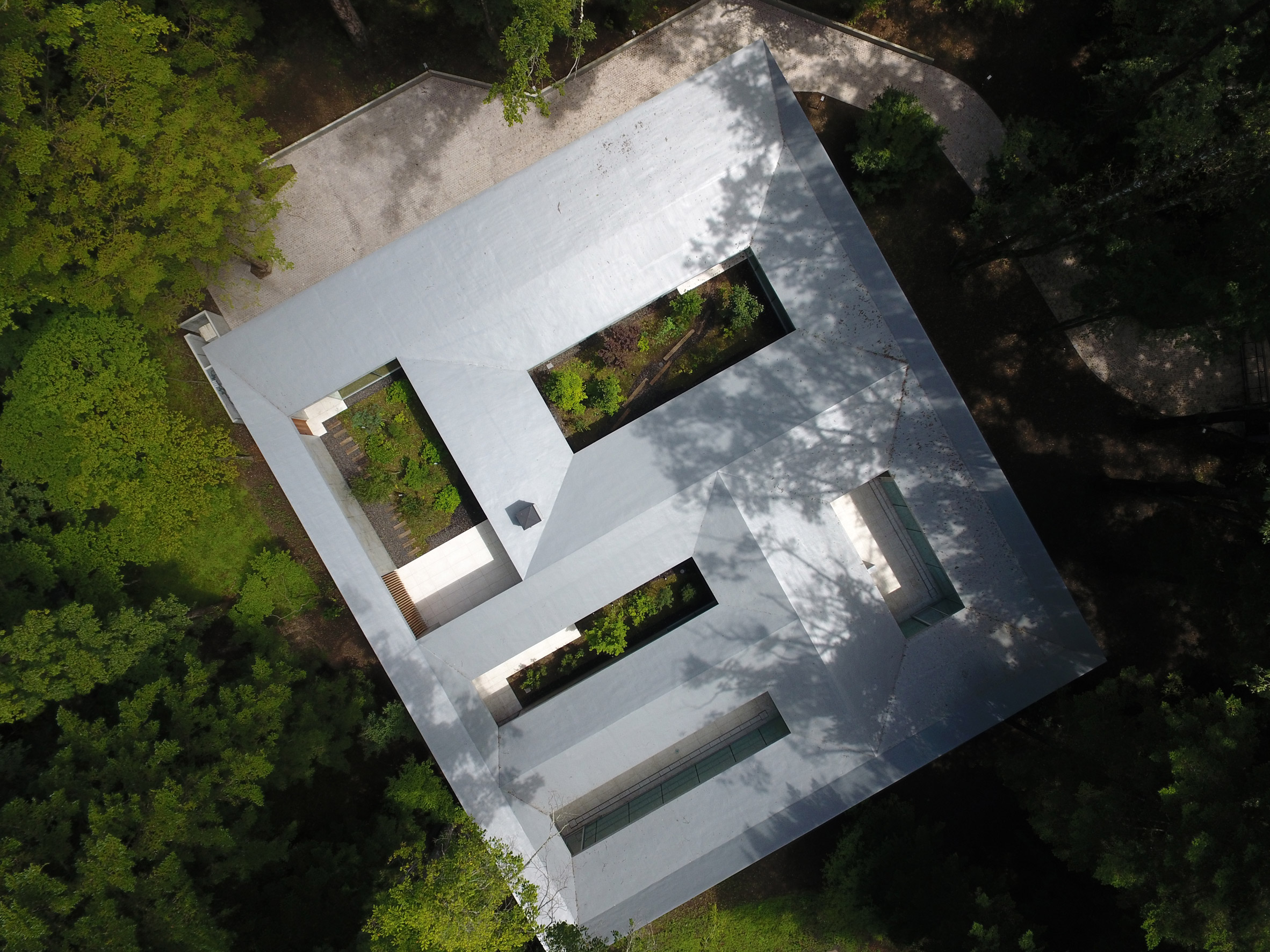 House in a Japanese forest features secluded courtyards framing views of trees and sky