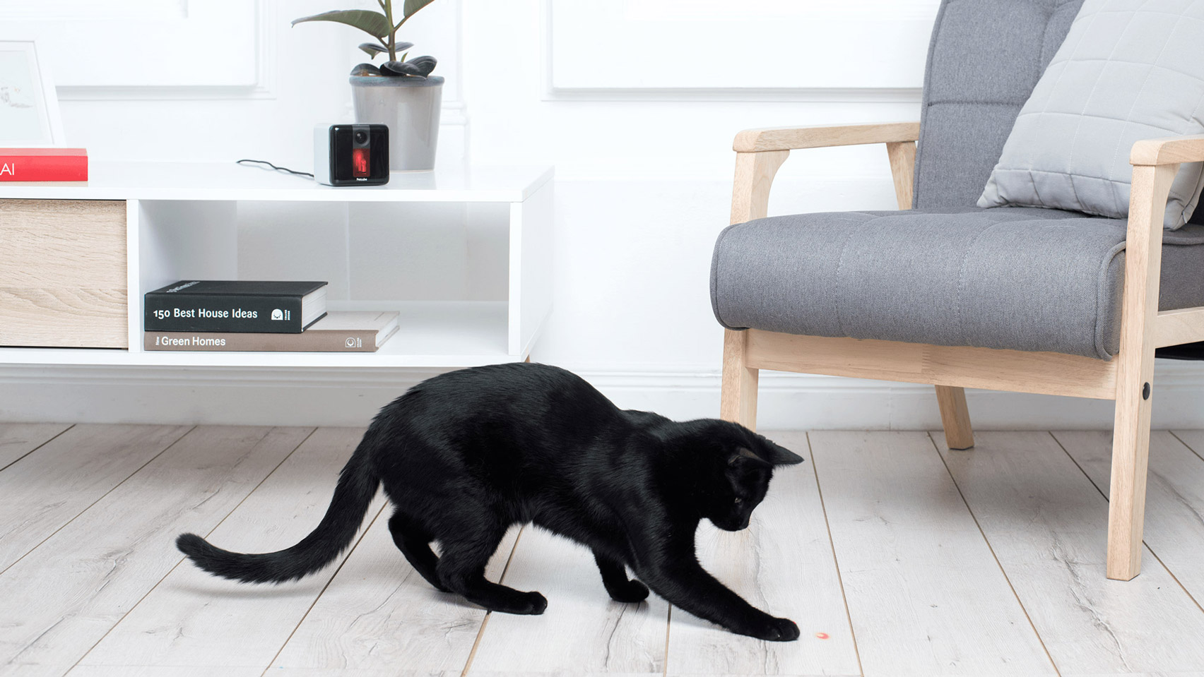 Petcube Play lets you to interact with your pet remotely from a