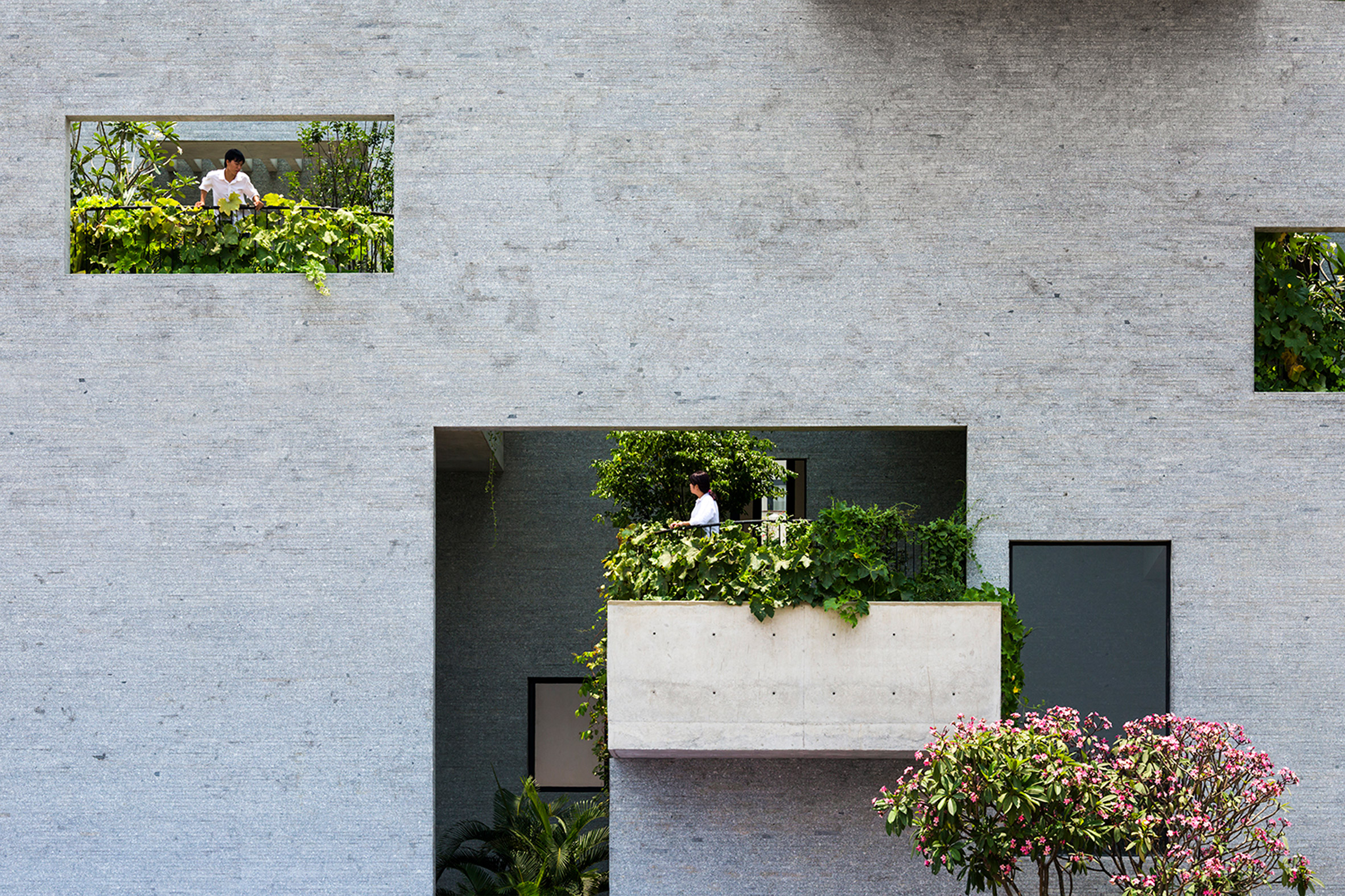 Planted terraces are interspersed among living spaces at Vo Trong Nghia's Binh House