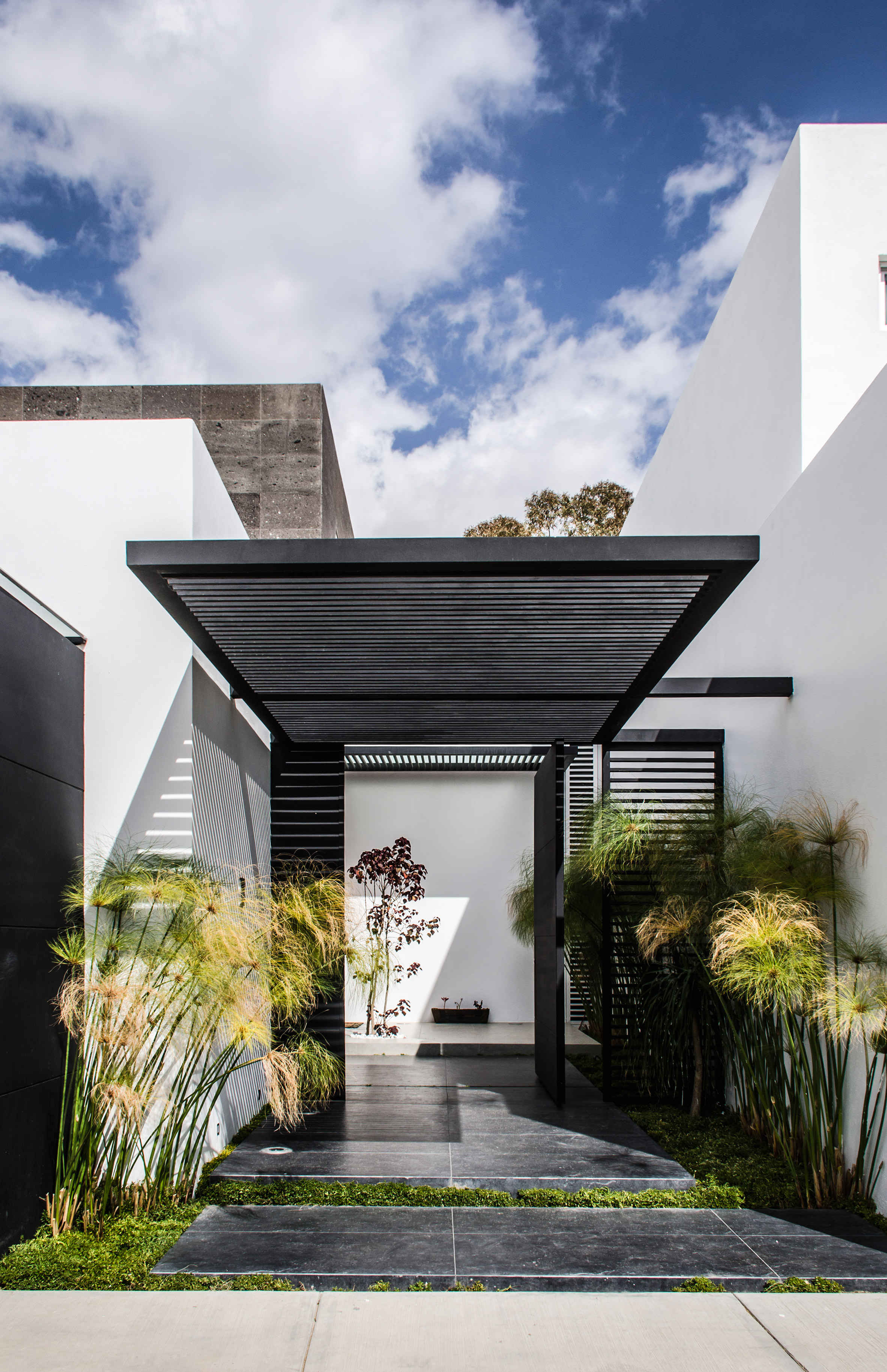 Mesquite tree serves as focal point for Mexican home by BAG Arquitectura