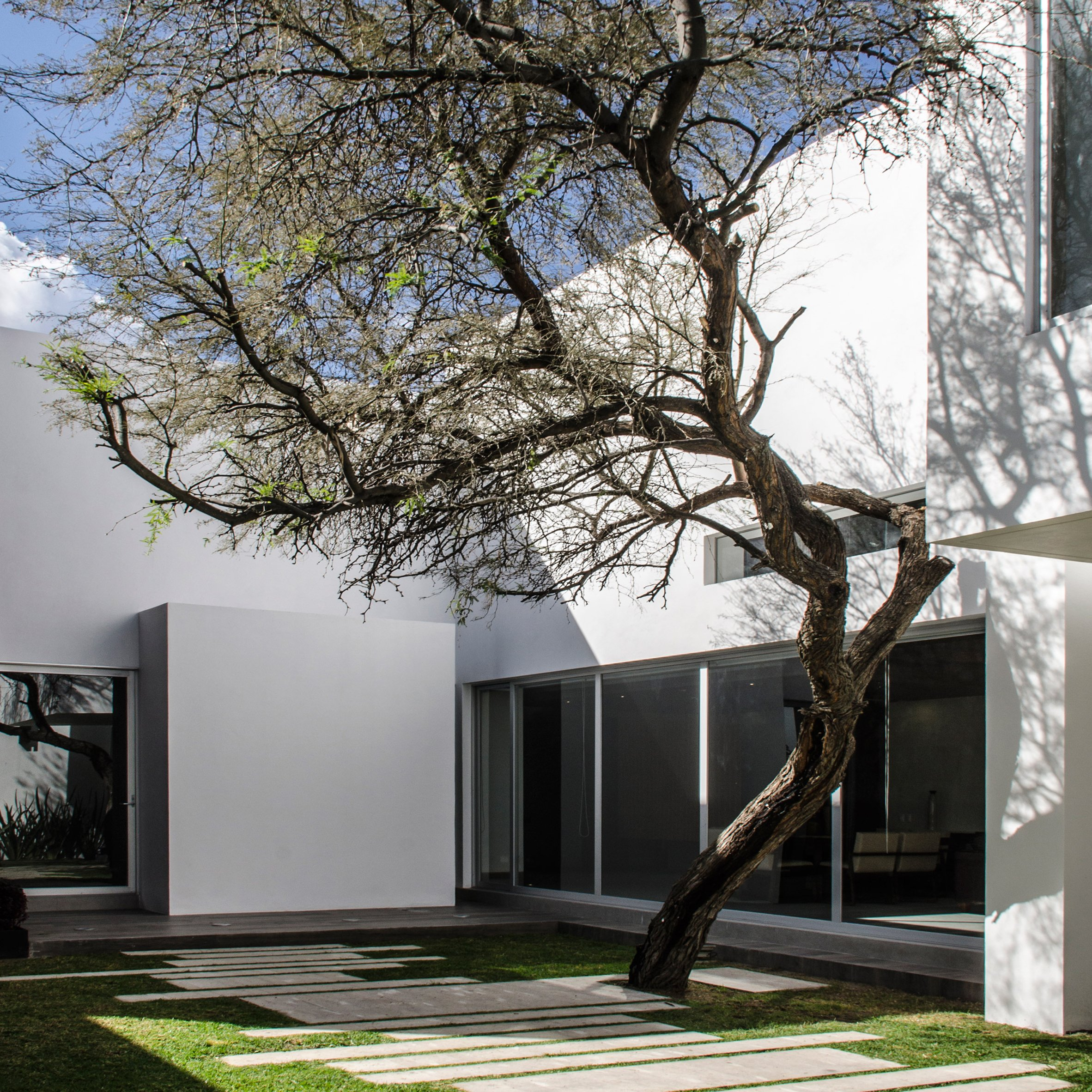 Central de arquitectura a mexico city based design studio has - Mesquite Tree Serves As Focal Point For Mexican Home By Bag Arquitectura This Monochrome Dwelling In Central Mexico