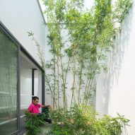 A House in the Trees by Nguyen Khac Phuoc Architects