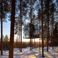 Hufton + Crow's new photographs capture Sweden's Treehotel at sunrise and dusk