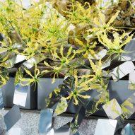 Kaleidoscopic ivy installation by Nendo