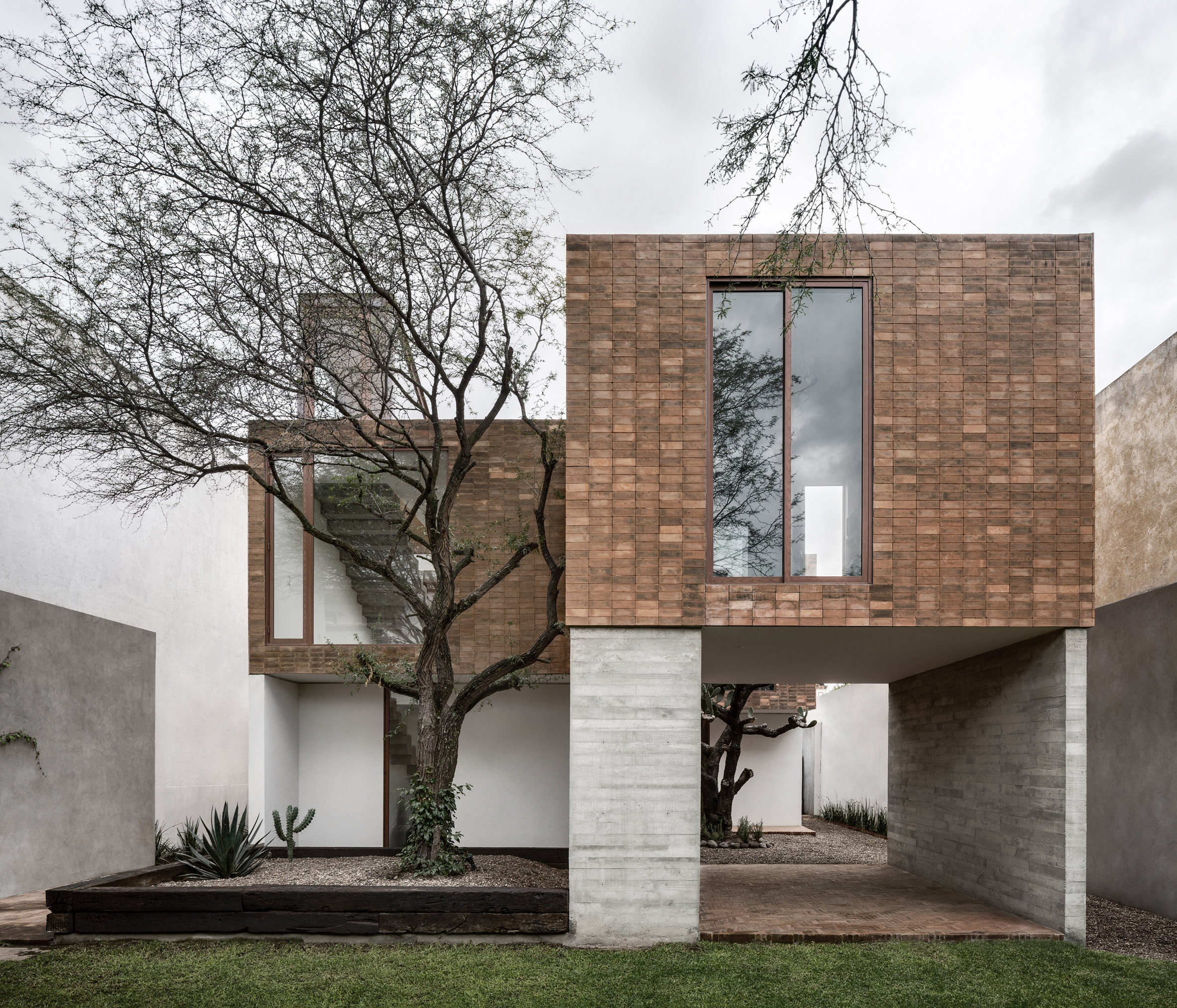 Clay brick and concrete Mexican house surrounds a cactus tree