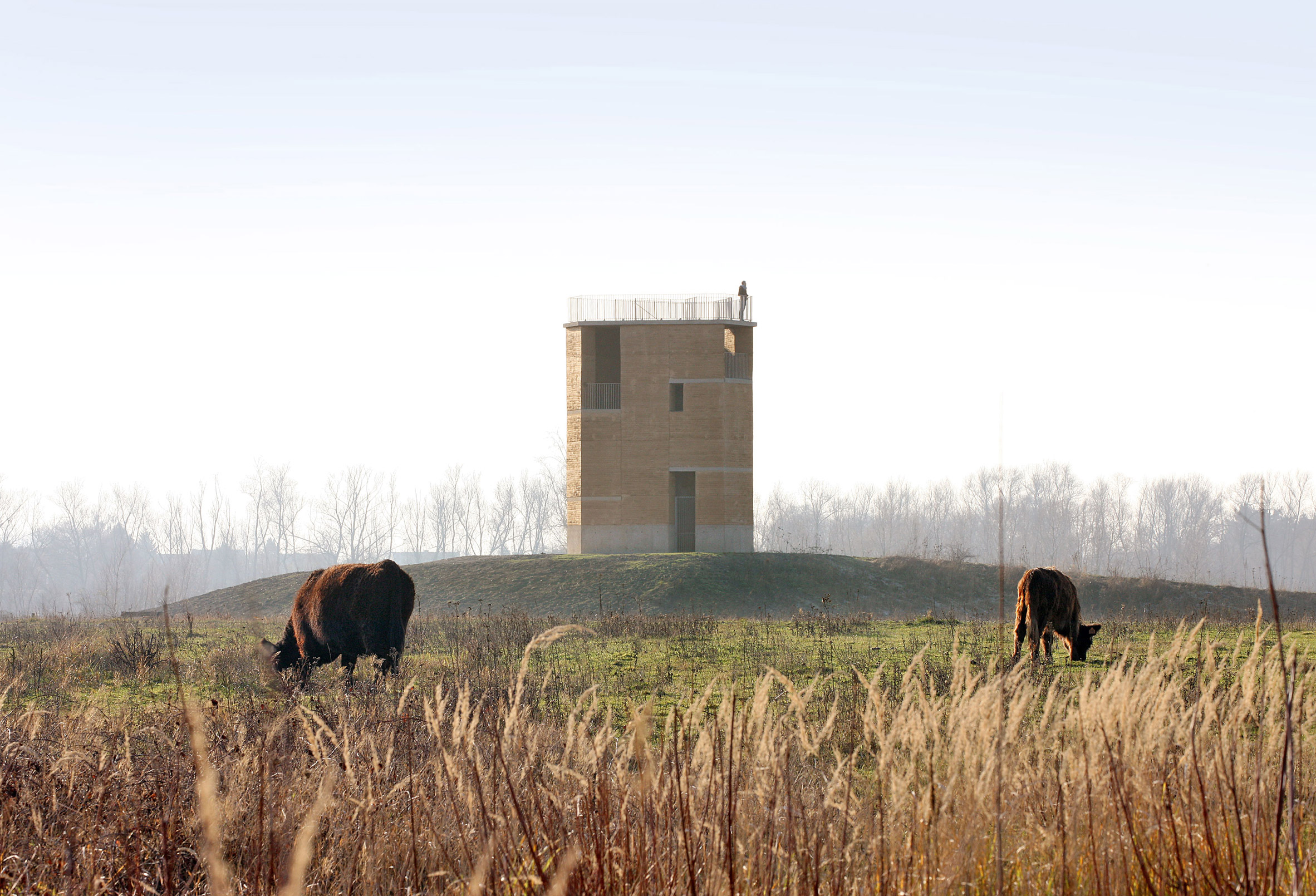Rammed-earth tower by De Gouden Liniaal Architecten overlooks the Maas river