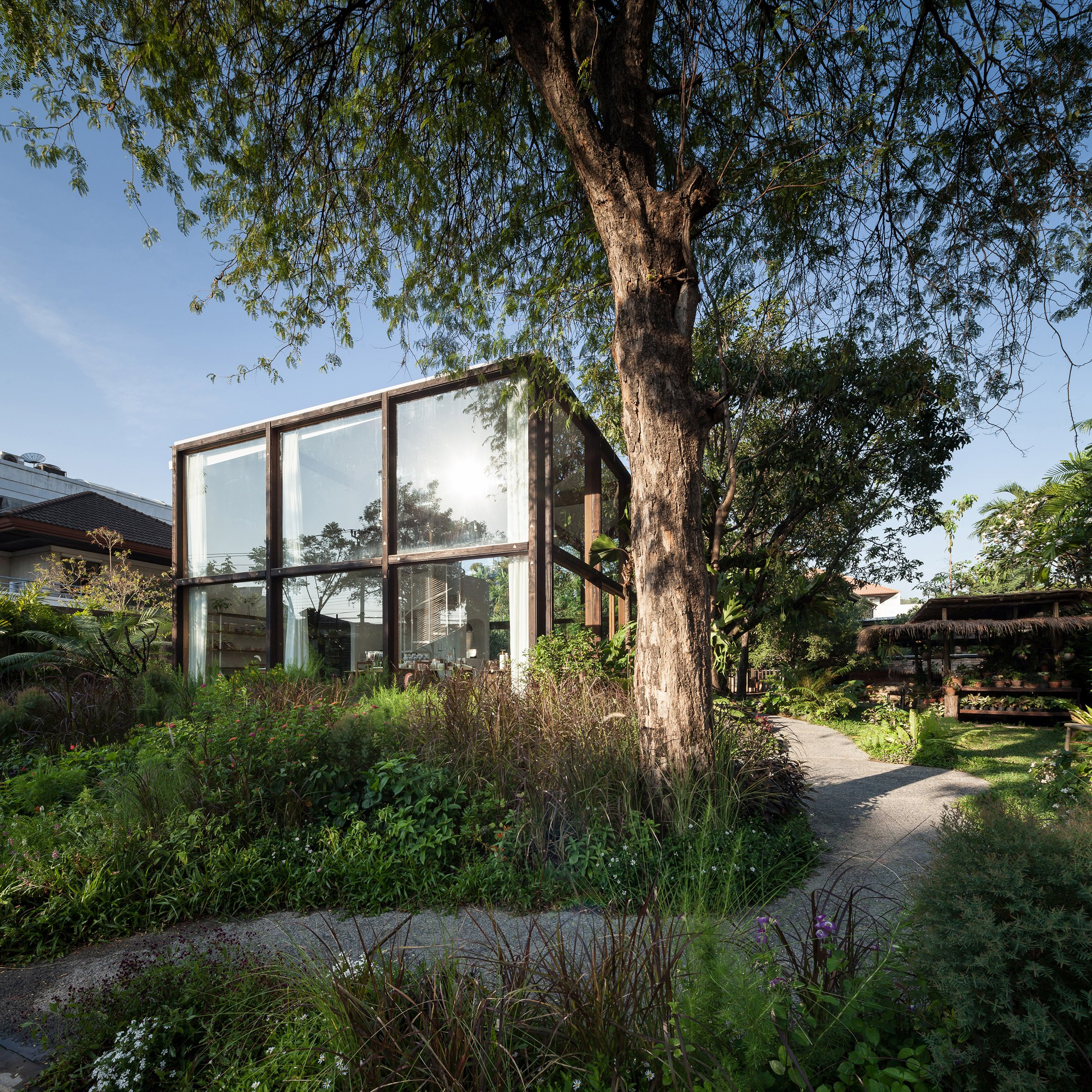 Gridded glazing frames garden views from NitaProw's organic beauty shop in Bangkok