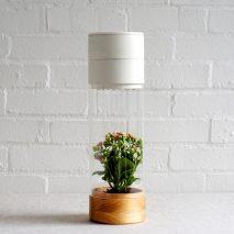 Royal College of Art graduate, Jen-Hsien Chiu, designs product called 'Phabit'