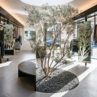 Dan Brunn plants olive tree in centre of RTA Melrose boutique in Los Angeles