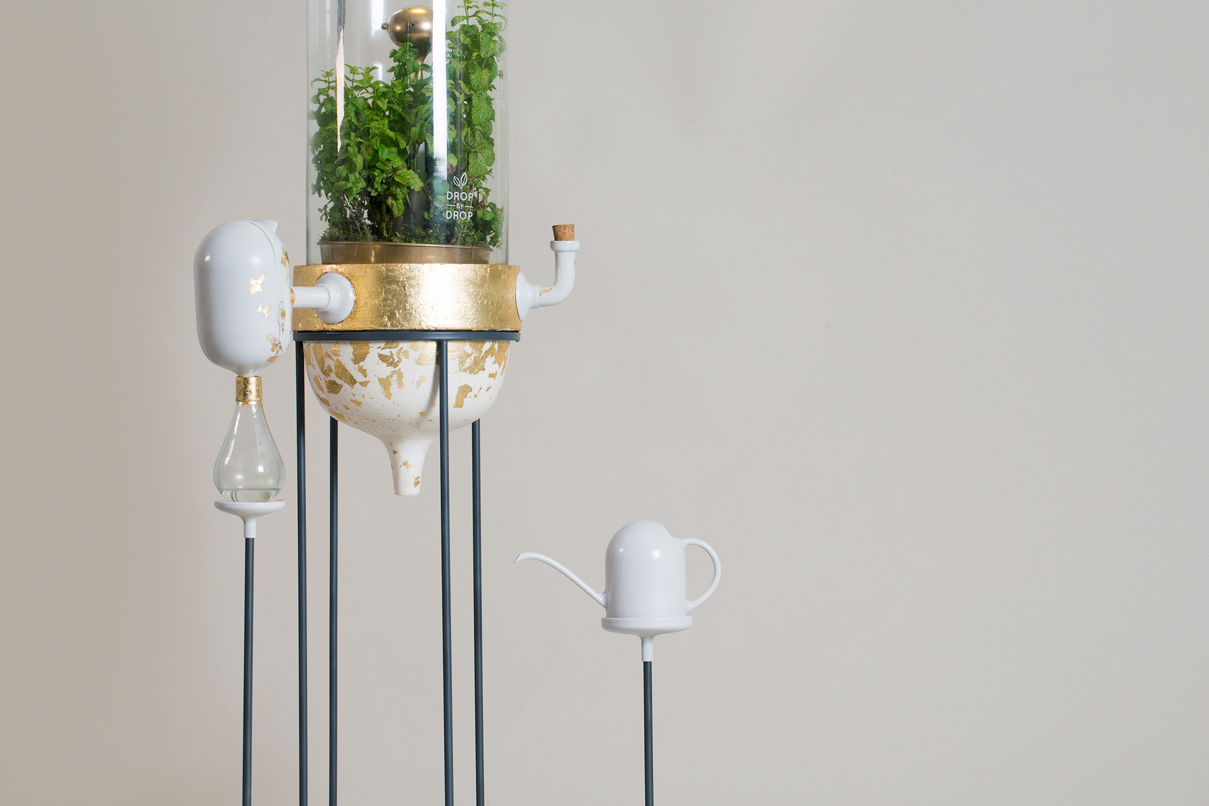 Drop by Drop is a plant-based water filter that works as a mini Amazon