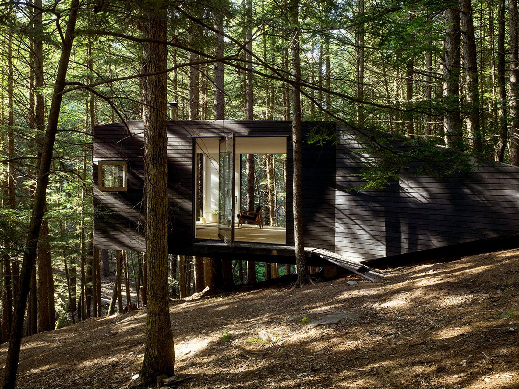 Хижина в лесу Нью-Йорка