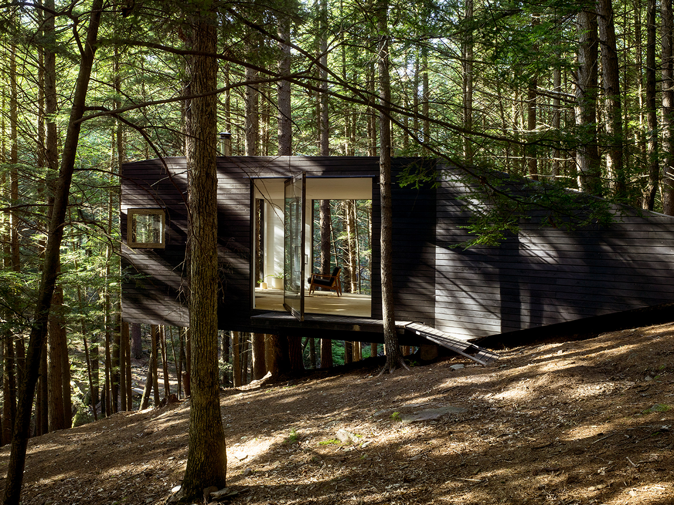 Tree House in New York by Jacobschang Architecture