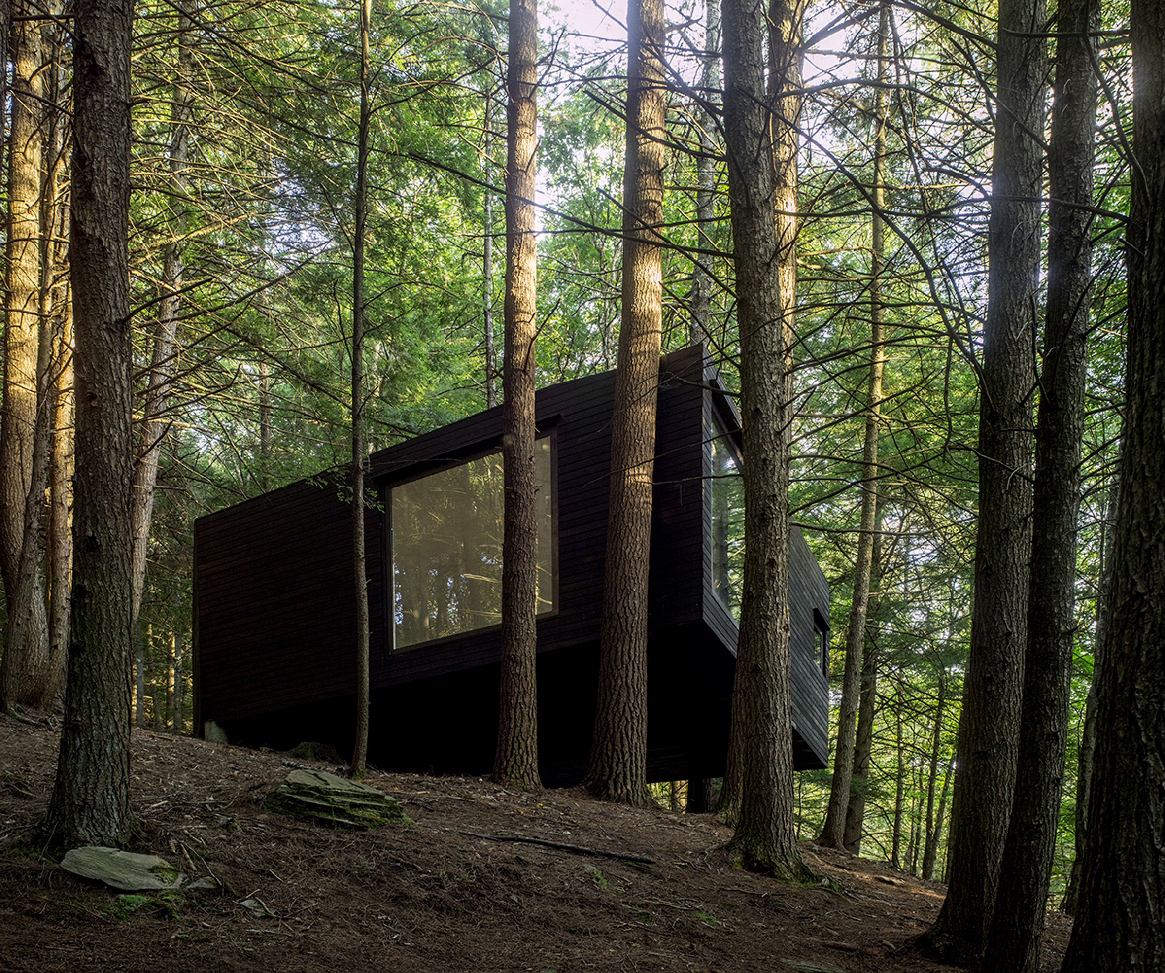Single-room cabin by JacobsChang is set among trees in upstate New York