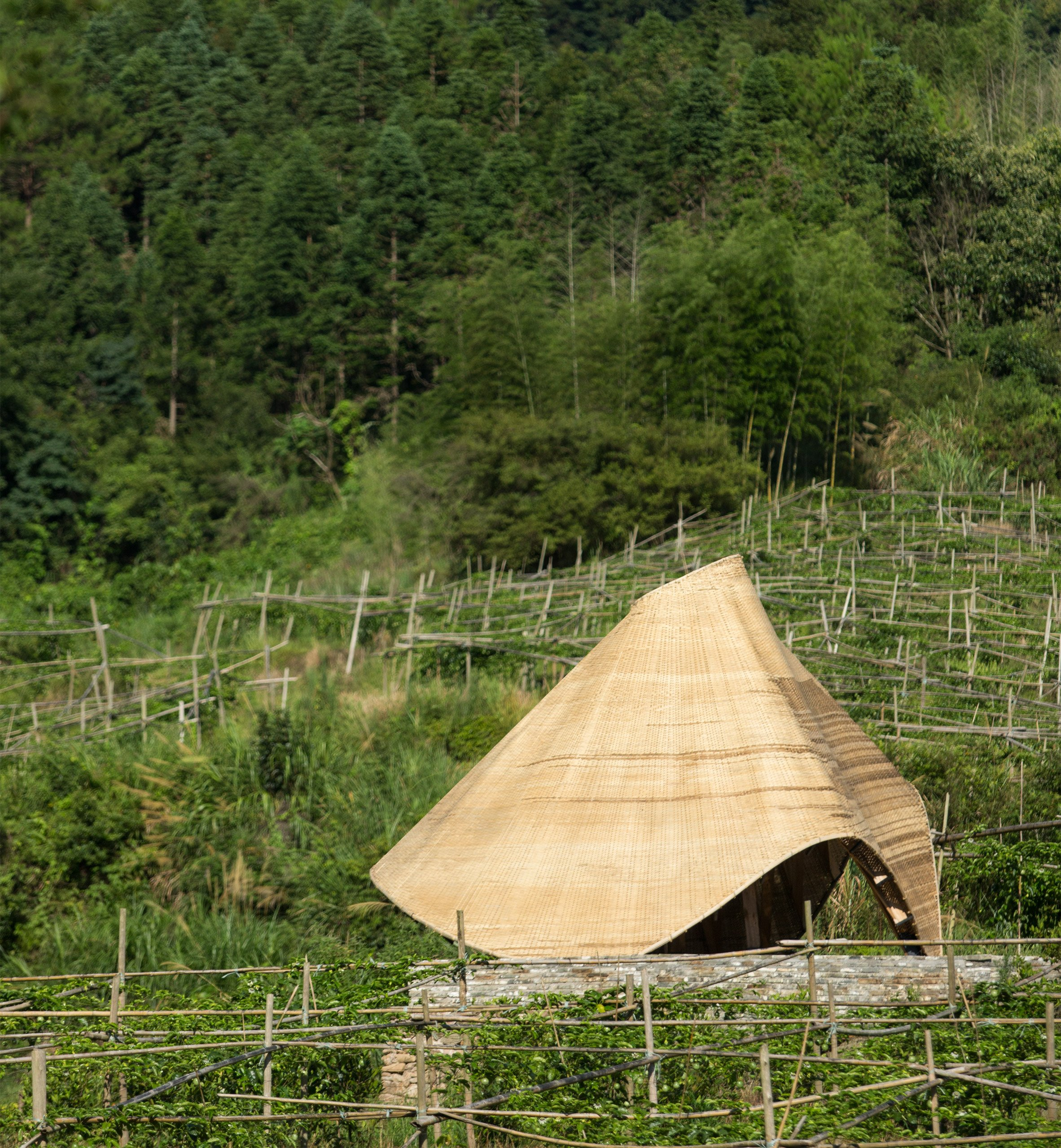 "Students ""reinvigorate"" traditional bamboo weaving with digital technologies for Sun Room pavilion"