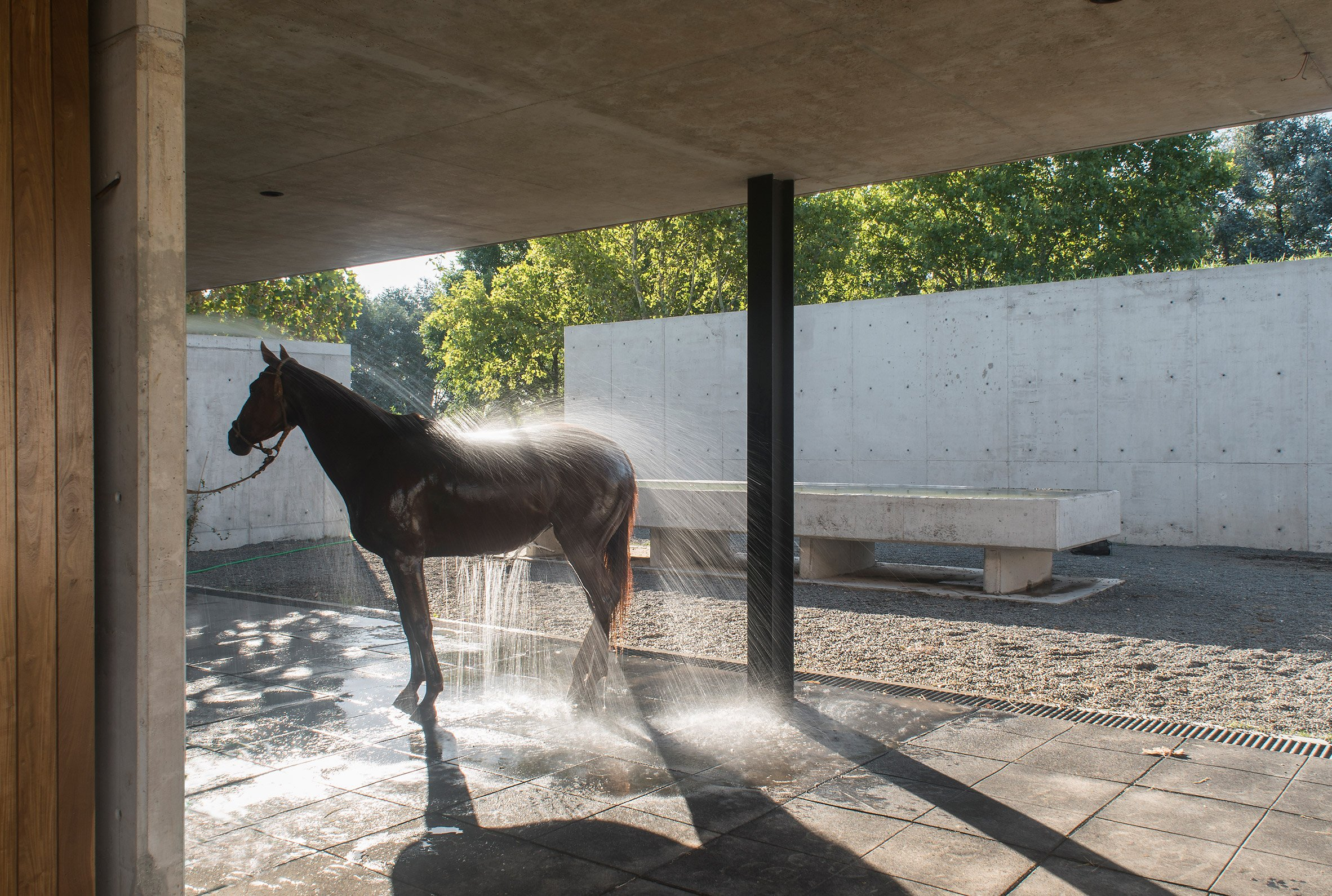 Polo stables features grassy roof for horses to graze and spectators