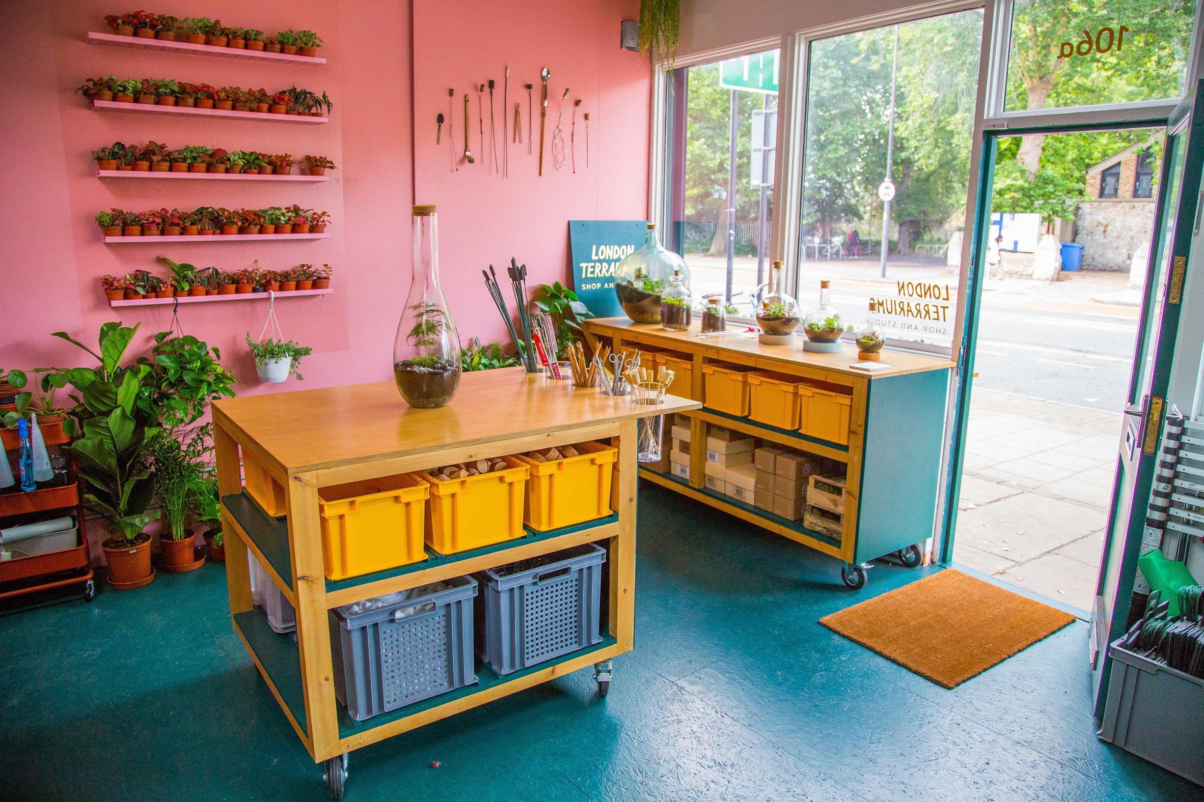 Instagram photo inspires brightly hued terrarium shop in London