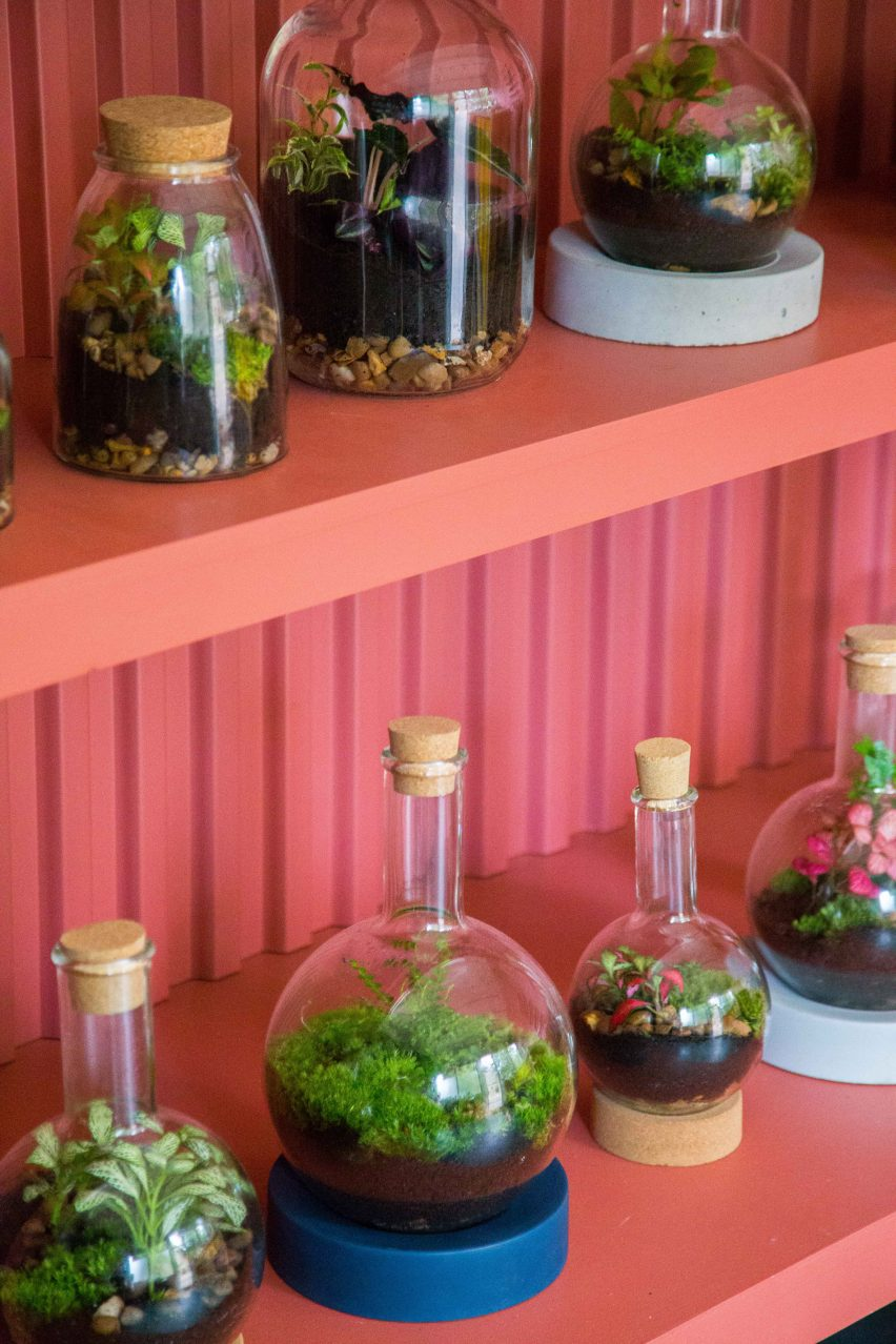 Instagram Photo Inspires Brightly Hued Terrarium Shop In South London