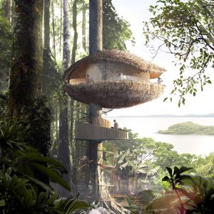 Baca Architects Bases Treehouses For Panama Eco Resort On Cocoa Pods