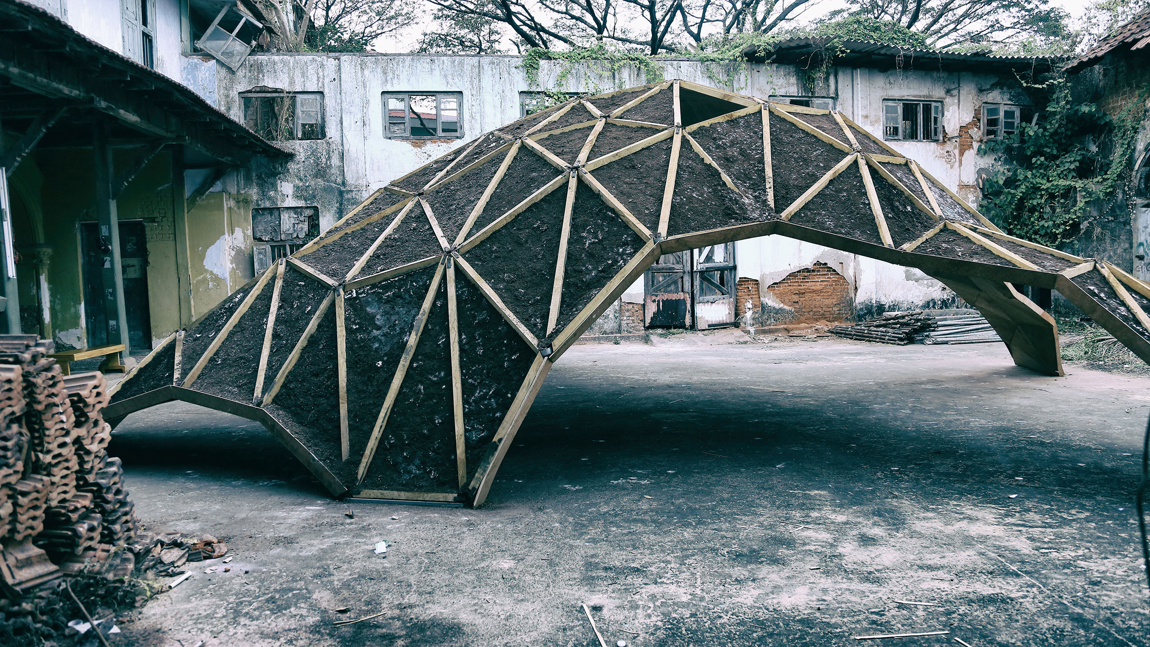 Fungus used to build arching pavilion in Kerala