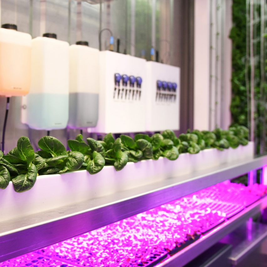 Freight Farms allow leafy greens to be grown in urban environments