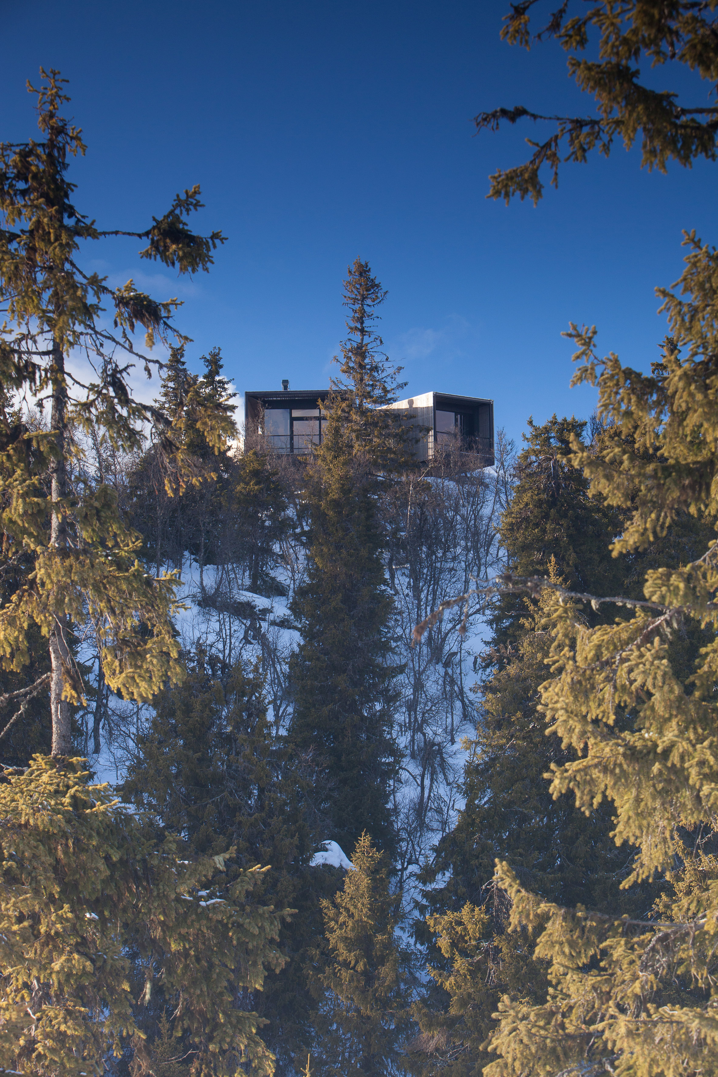 Lund Hagem installs Y-shaped cabin on a hilltop overlooking Norwegian ski resort