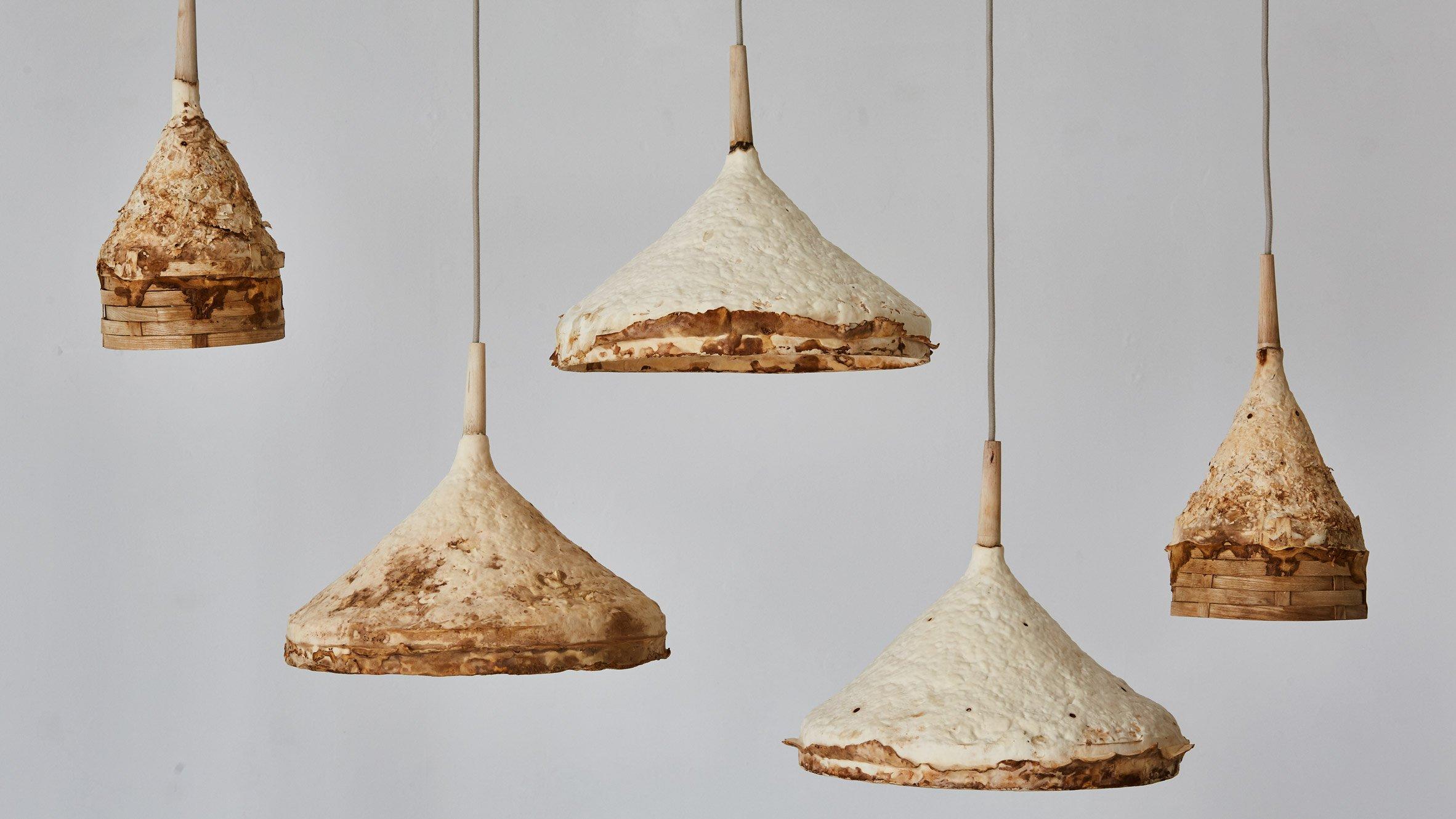 ... Mushroom mycelium used to create suede-like furniture by Sebastian Cox and Ninela Ivanova & Stool design and product news | Dezeen islam-shia.org