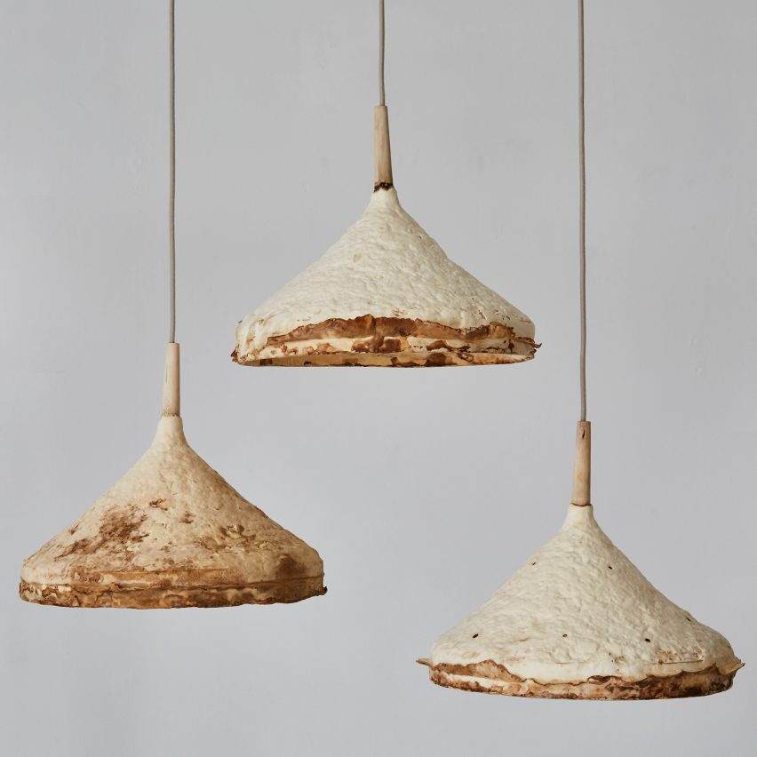 Mushroom mycelium used to create suede-like furniture by Sebastian Cox and Ninela Ivanova