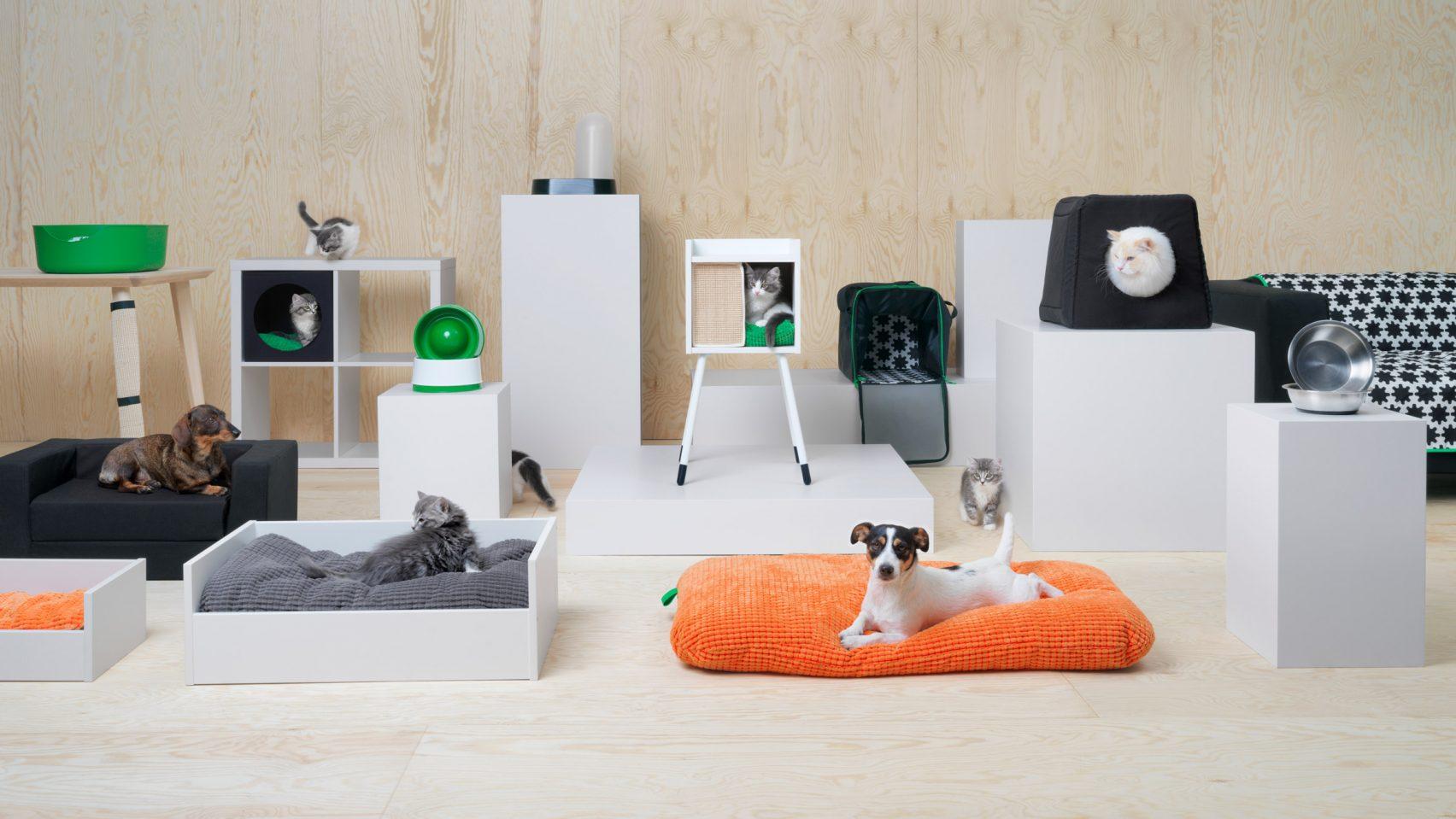 Har du ny IKEA-soffa? Det vete katten