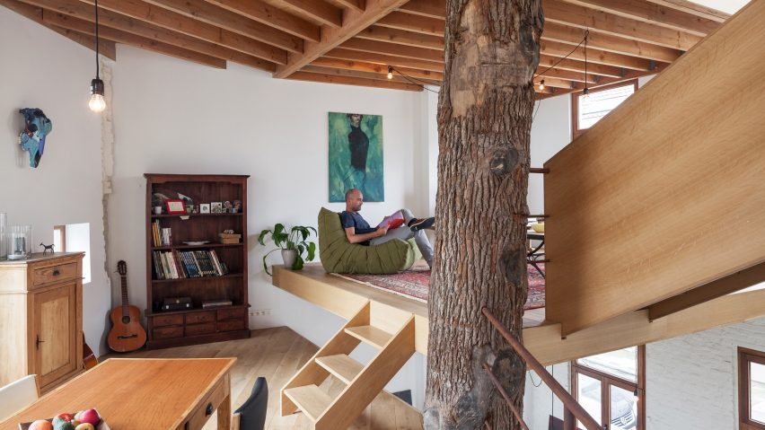 Atelier Vens Vanbelle build pentagonal house around an oak tree trunk